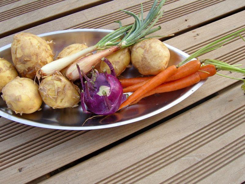 Légumes Primeurs chou rave violet carottes échalottes nouvelles