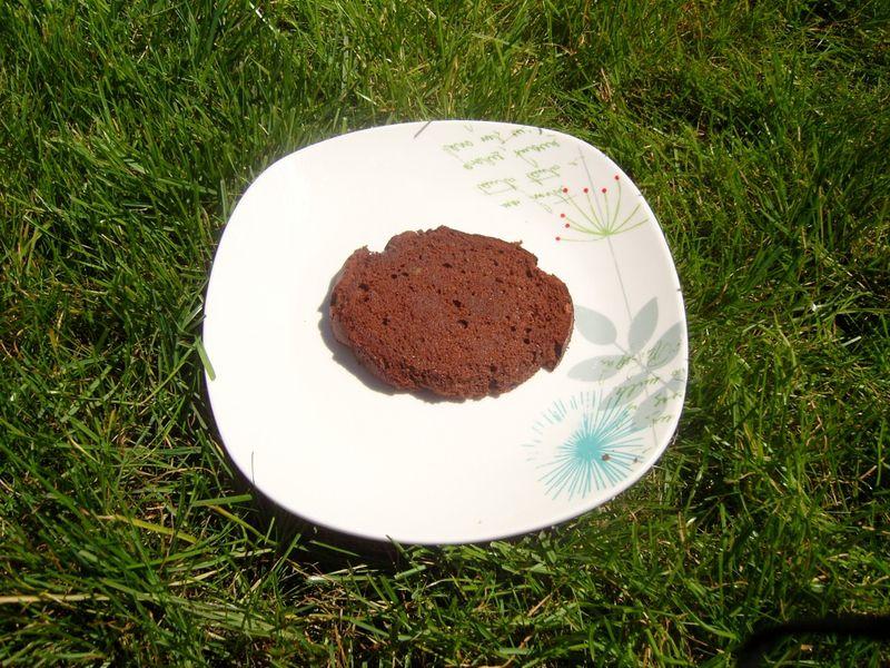 Gâteau au chocolat light et bon 0%de complexe
