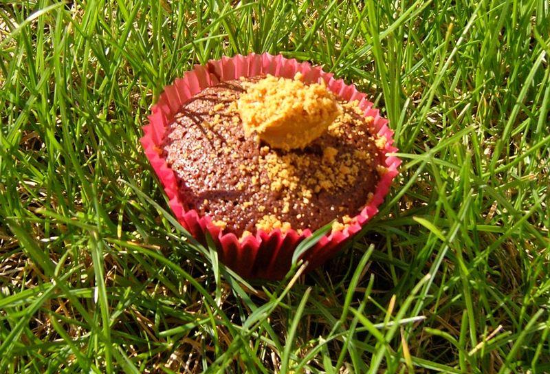 Cupcake Chocolat Speculoos V2