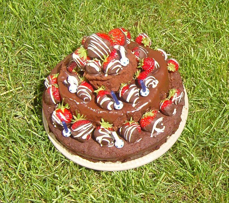 Fraises aux deux chocolats sur gâteau