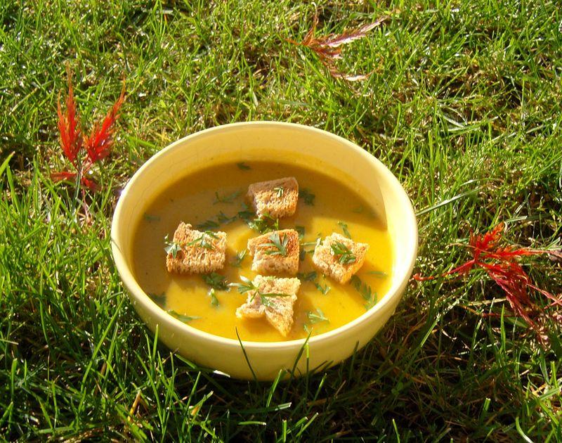 Soupe de Carottes avec ses fanes et ses croutons