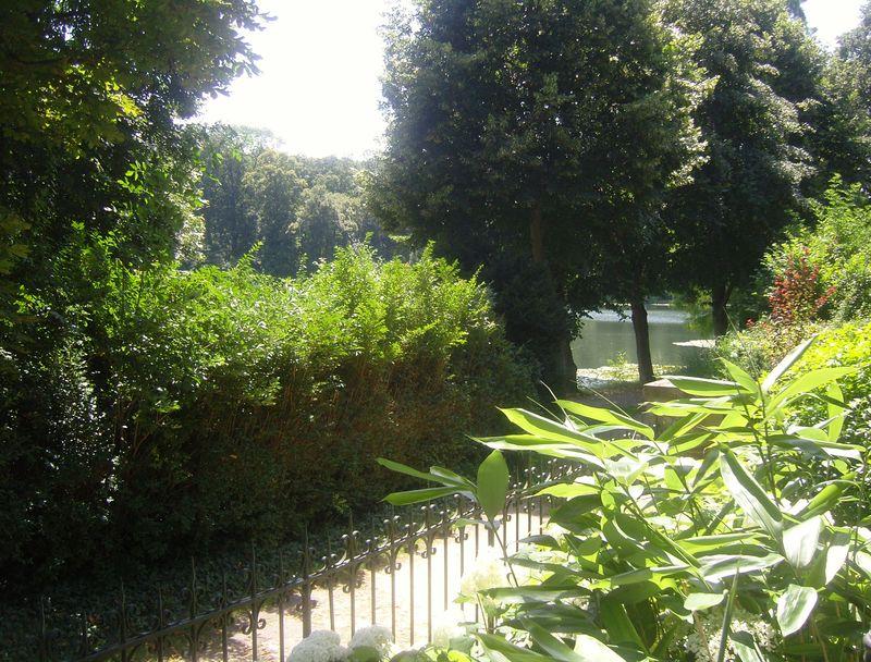 Les étangs de Corot vue depuis les paillottes