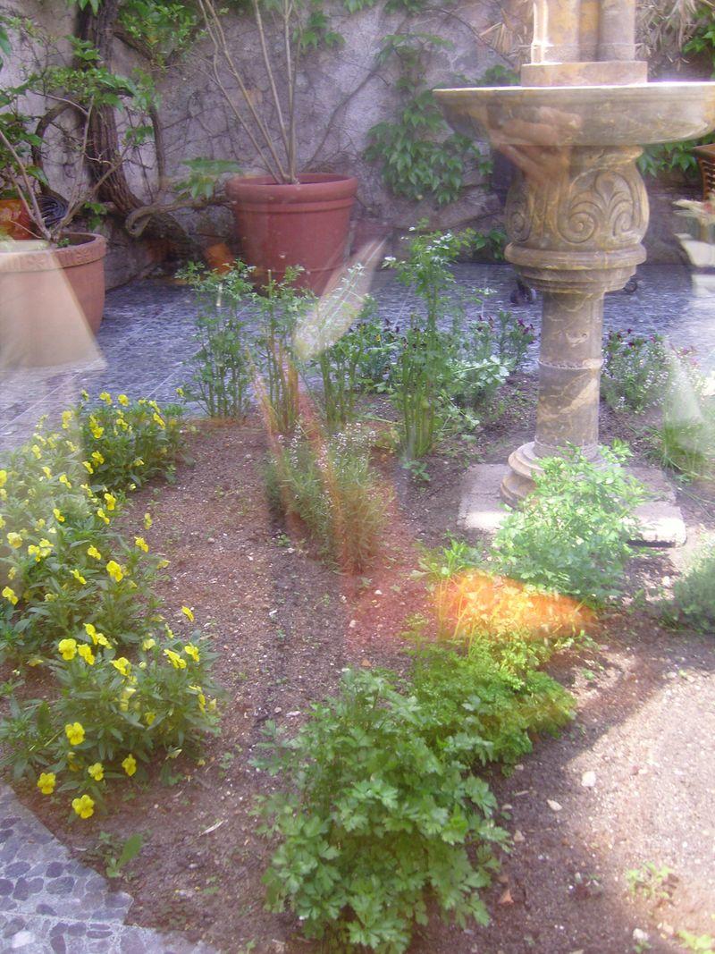 Charles Barrier Jardin Aromatique