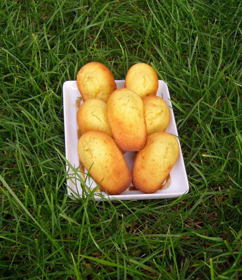 Madeleines au chocolat blanc poivre gingembre sur herbe