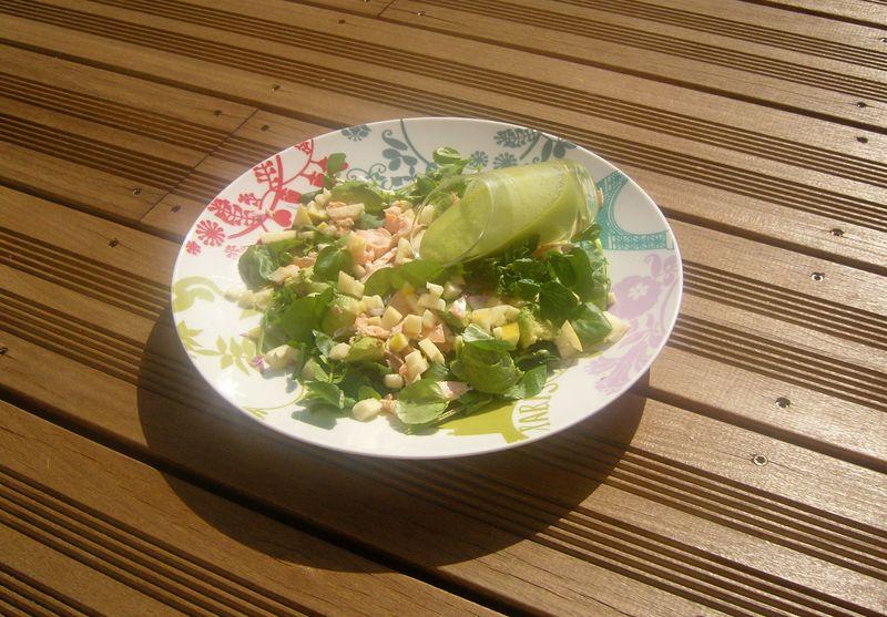 Salade Surprise de Cresson au Saumon et Sa Sauce Verte