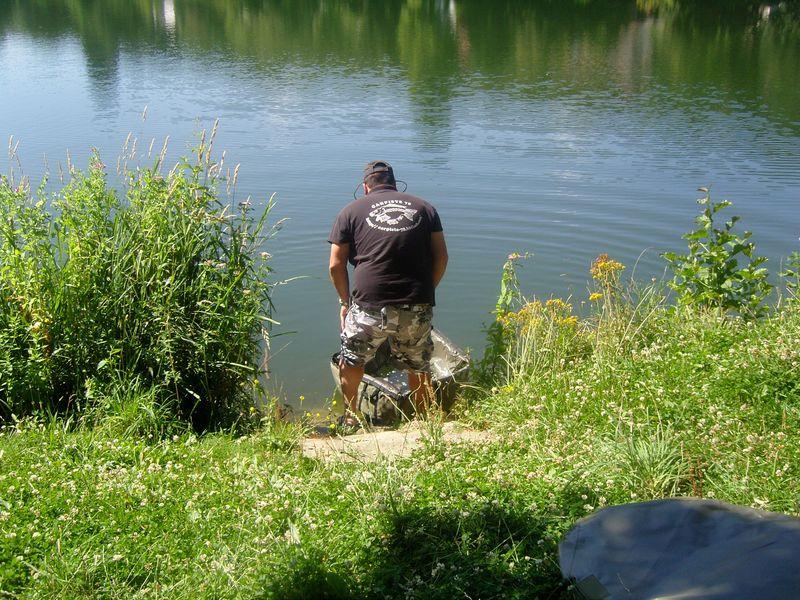 Les étangs de Corot Carpe pêchée remise a l'eau